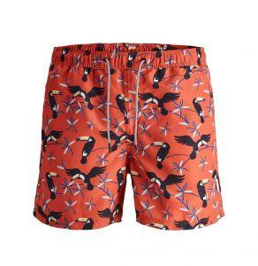Jack & Jones Men's Swimwear JJTARUBA JJSWIMSHORTS ANIMAL (12169645)